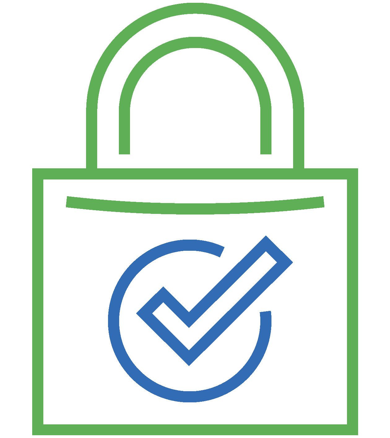 Vulnerability Assessments Icon